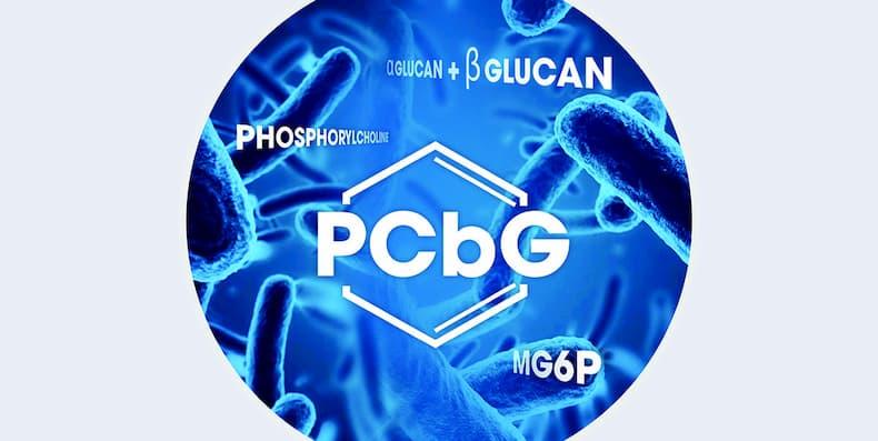 Hợp chất tiên phong PCbG là gì? Tác dụng như thế nào?