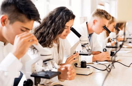 Quy trình sản xuất và kiểm duyệt dược mỹ phẩm hữu cơ