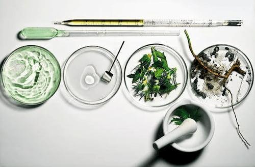 Chứng nhận Ecocert Cosmos Organic cần đáp ứng tiêu chuẩn gì?