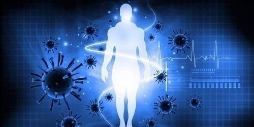 Một trong những tế bào quan trọng của hệ miễn dịch là tế bào bạch cầu