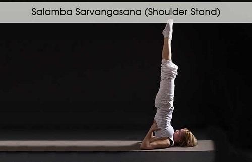 Tư thế đứng trên vai - Salamba Sarvangasana