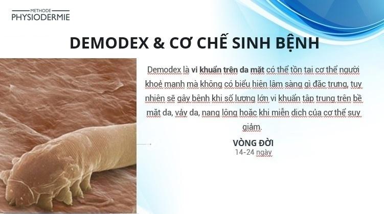 Tai biến da do Demodex - Điều trị & dự phòng tái phát
